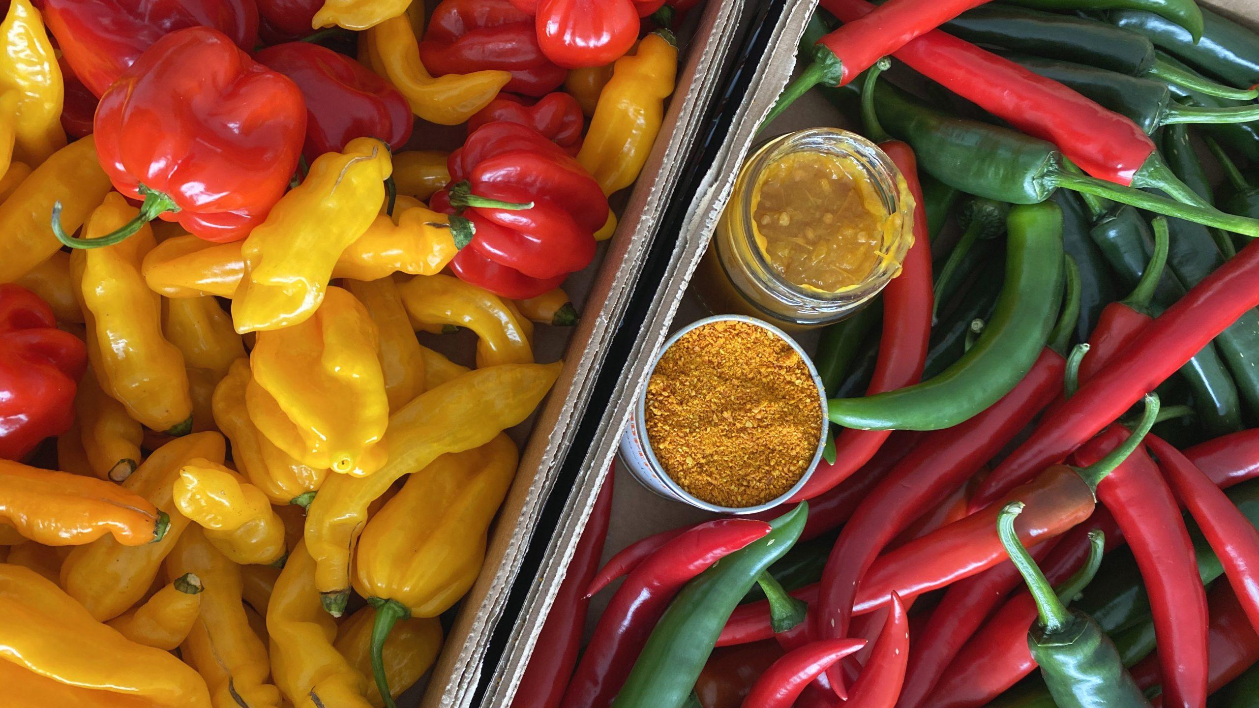 Nieuwe pepers!